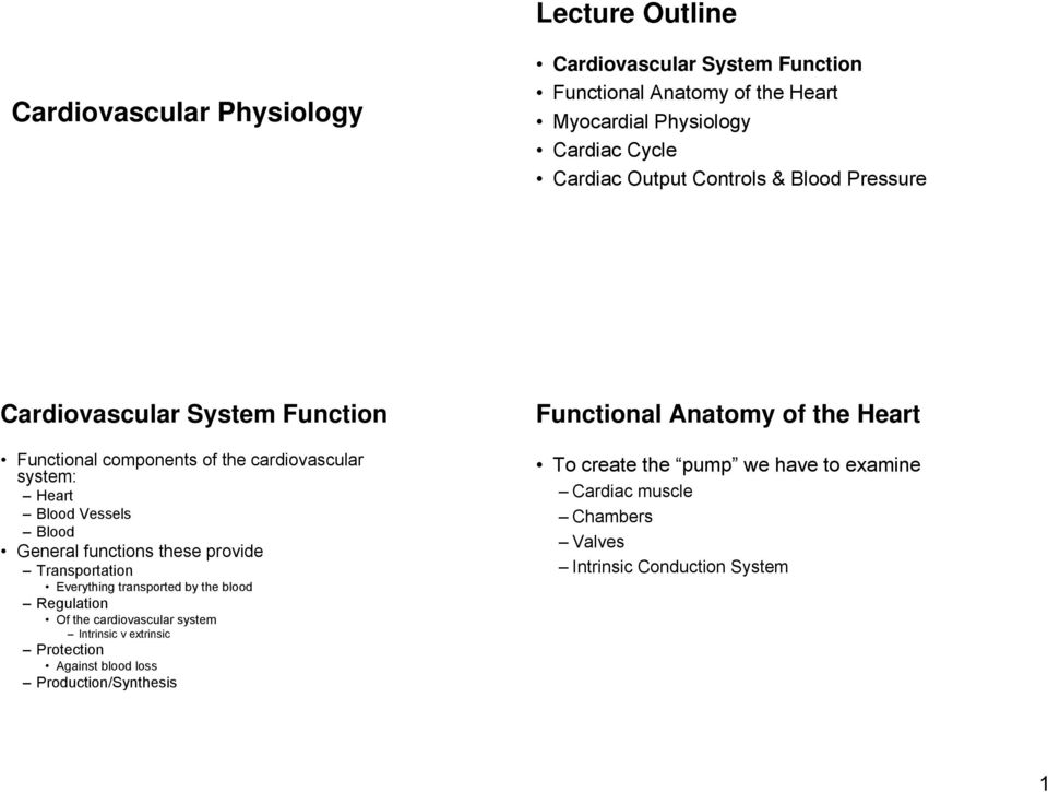 Lecture Outline Cardiovascular Physiology Cardiovascular System