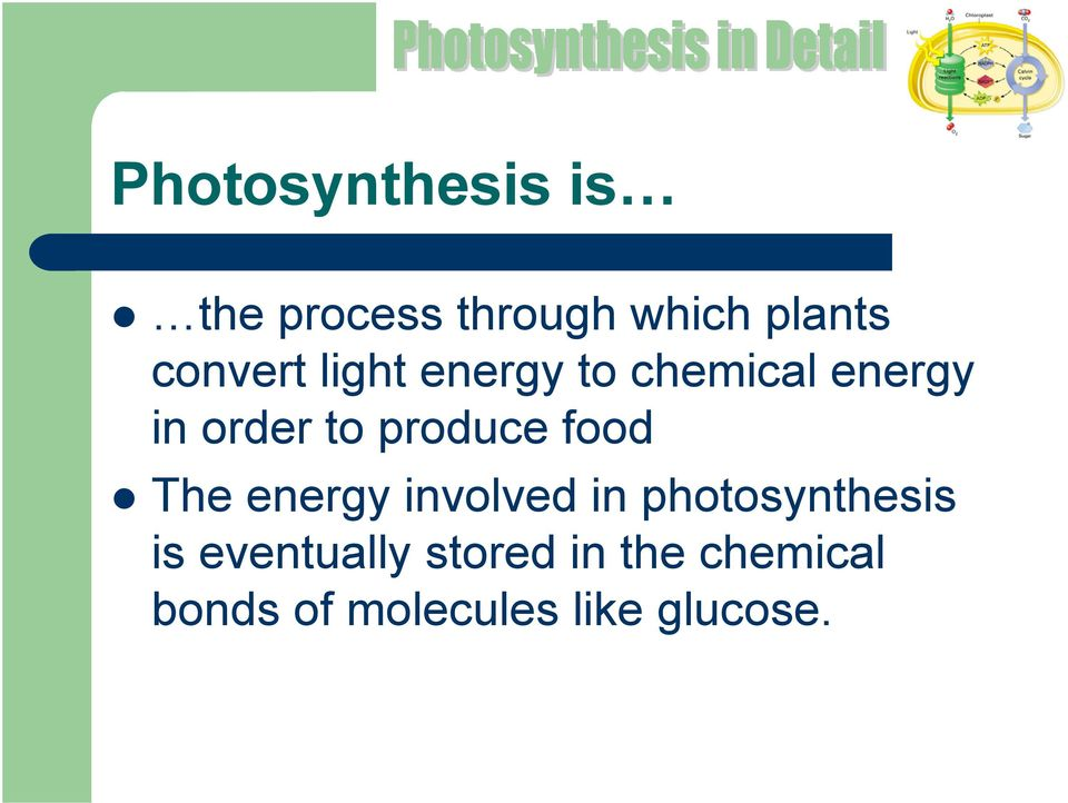 produce food The energy involved in photosynthesis is