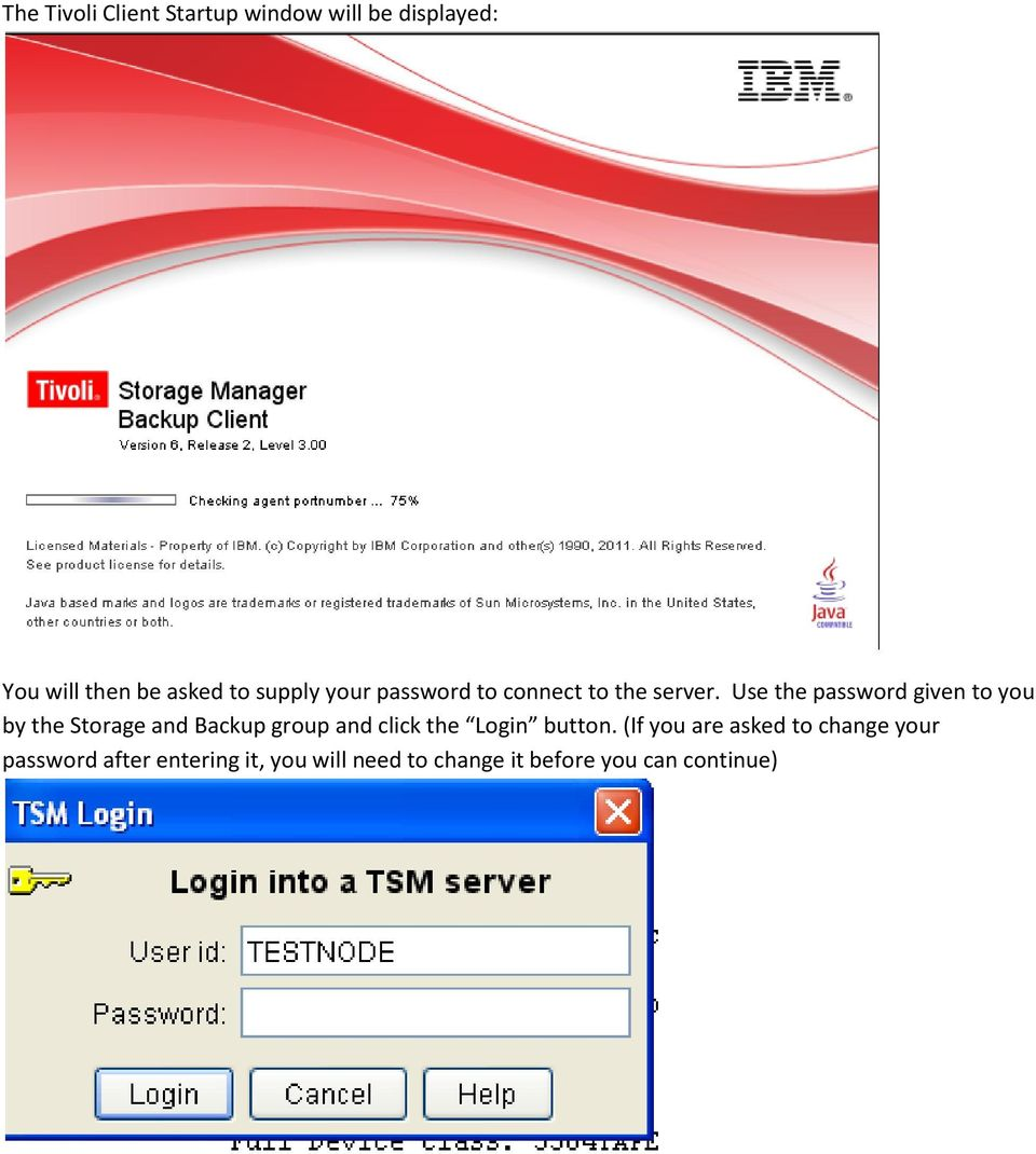 Use the password given to you by the Storage and Backup group and click the Login