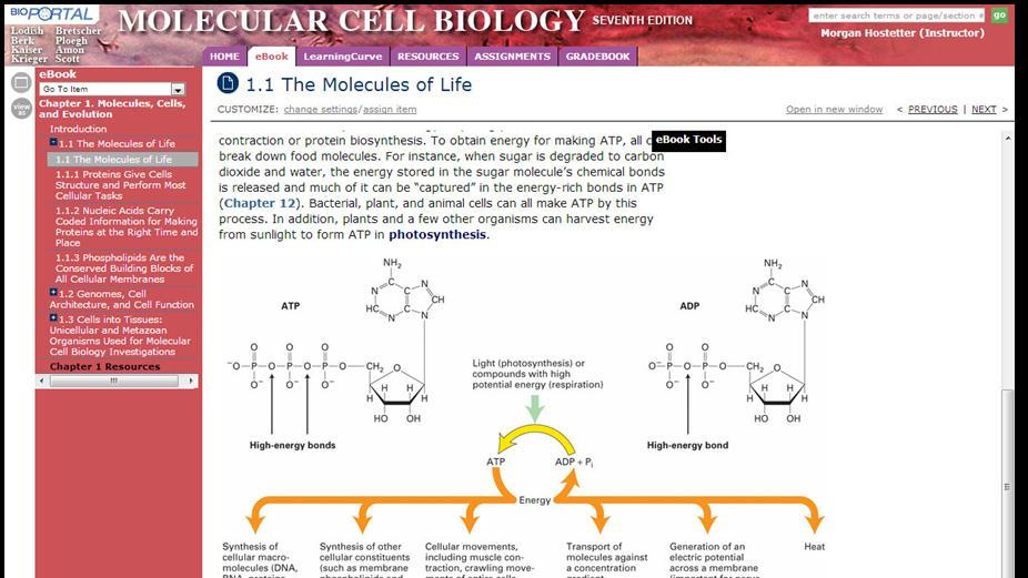Student User Guide For Bioportal Molecular Cell Biology Seventh