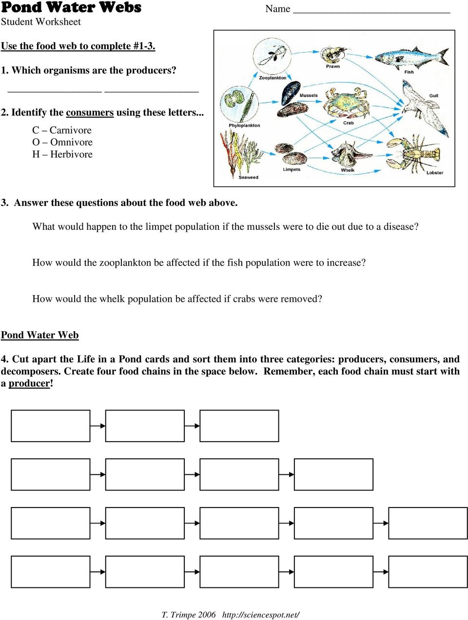 T Trimpe 2006 httpsciencespotnet Pond Water Pond Water Web WebWeb Lesson Plan Lesson Plan Lesson Plan Purpose As a result of this lesson