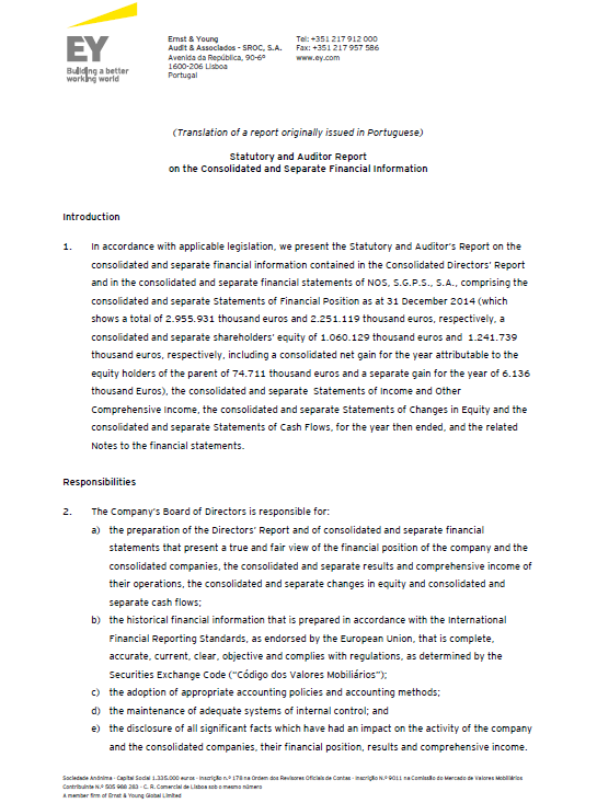 Consolidated Management Report - PDF