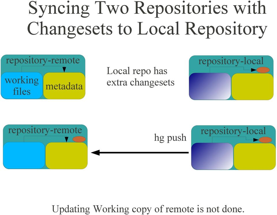 repo has extra changesets repository-local
