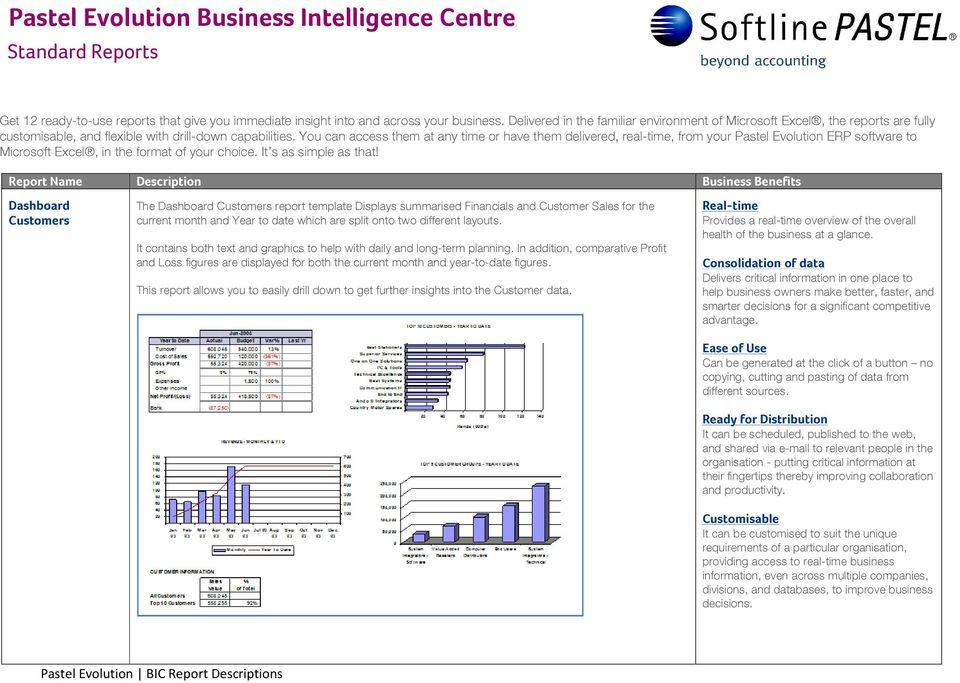 Business Intelligence Report Requirements Template from docplayer.net