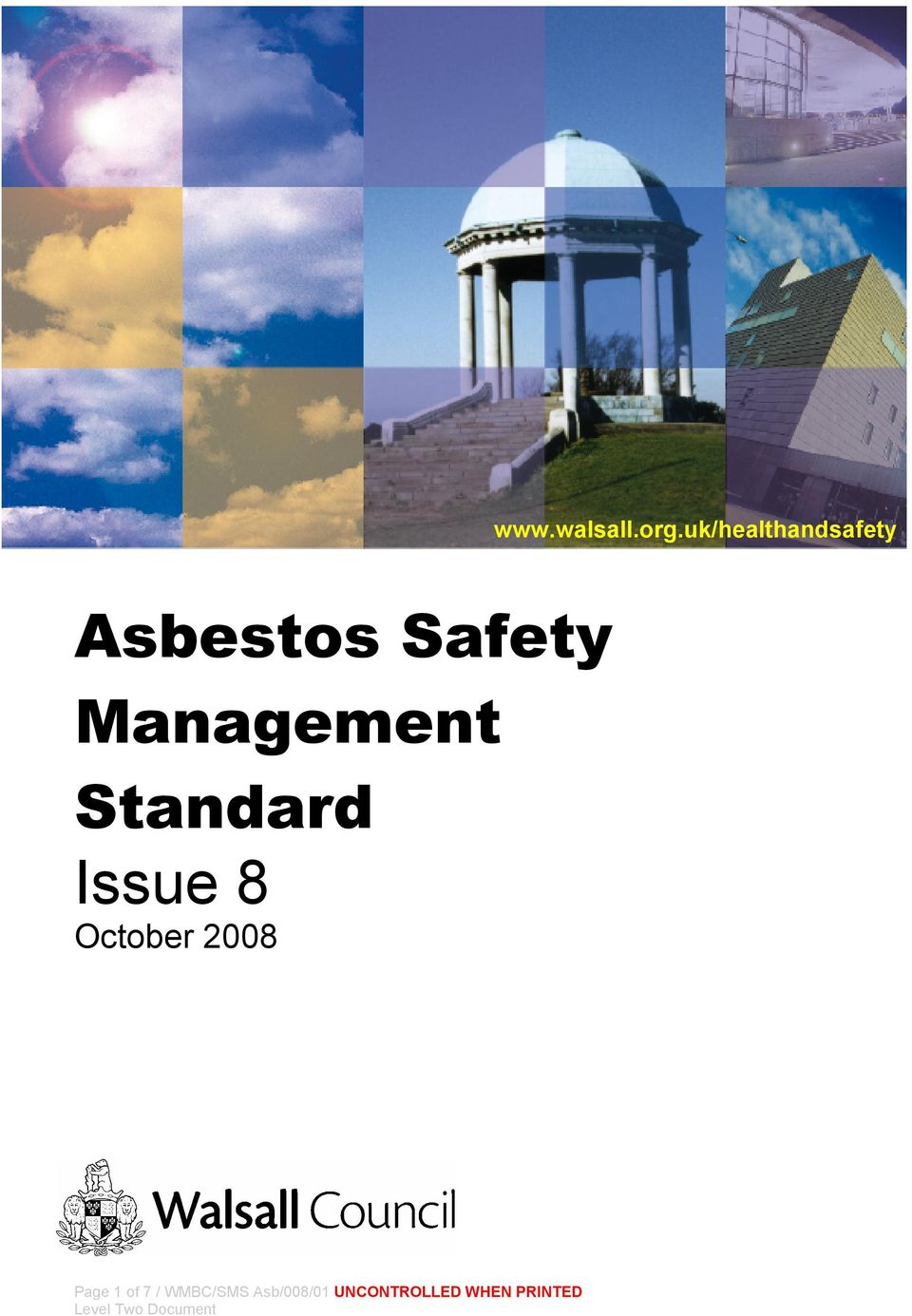 Management Standard Issue 8 October