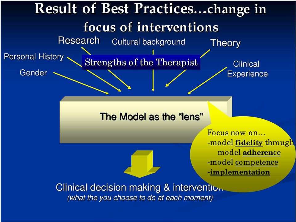 Strengths of the Therapist Theory Clinical Experience The Model as the lens Clinical
