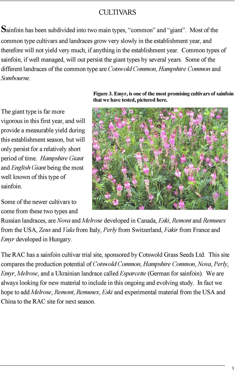 Sainfoin Worth Another Look Pdf