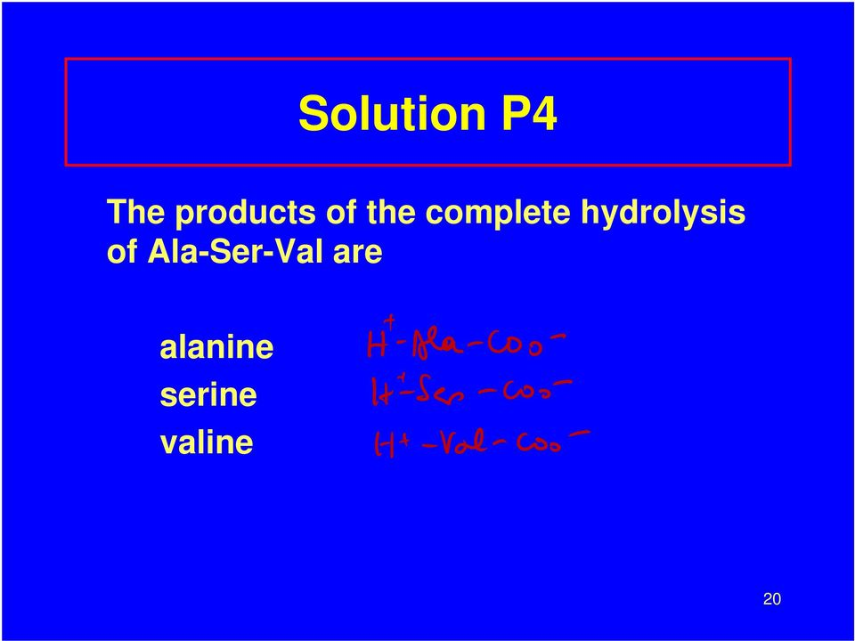 complete hydrolysis of