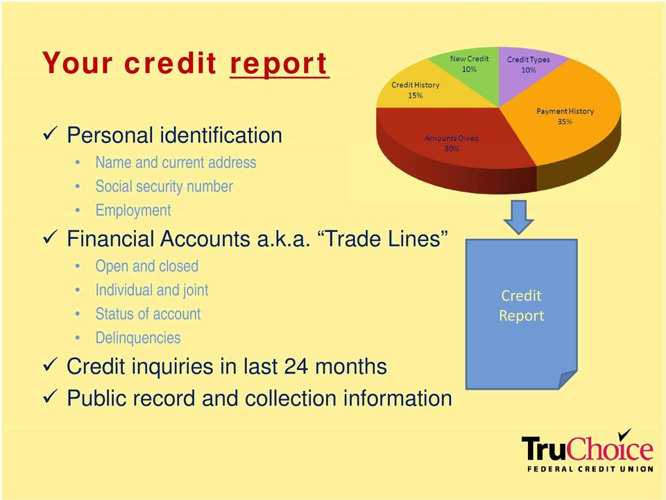 cial Accounts a.k.a. Trade Lines Open and closed Individual id and joint