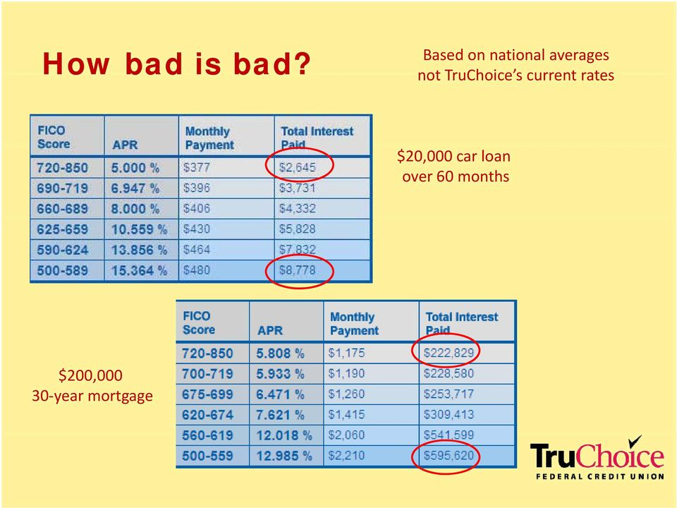 nottruchoice s currentrates rates