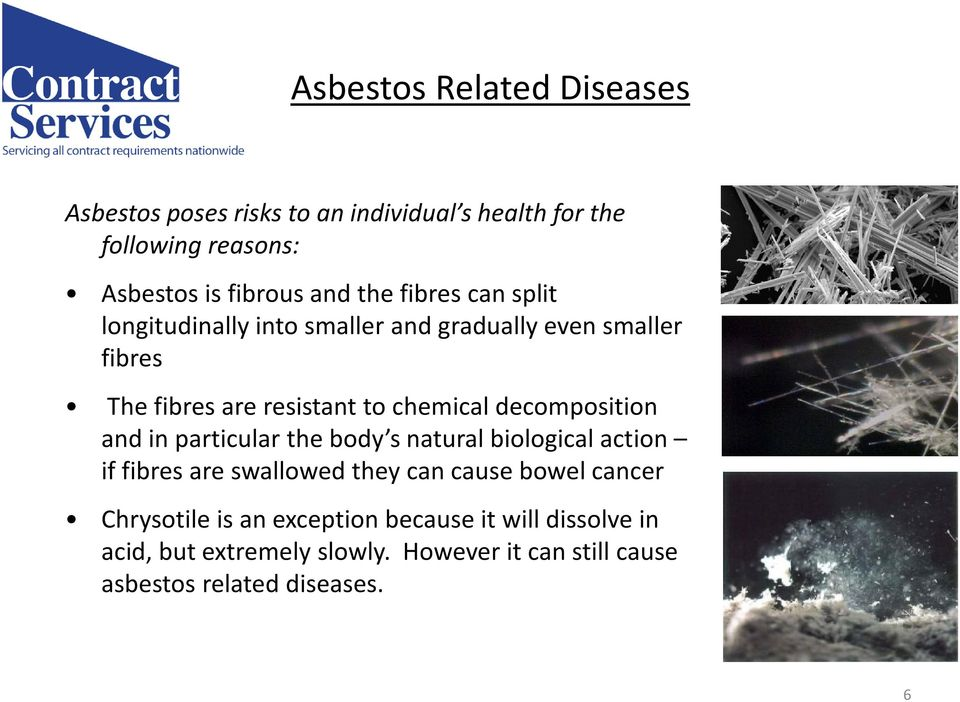 decomposition and in particular the body s natural biological action if fibres are swallowed they can cause bowel cancer