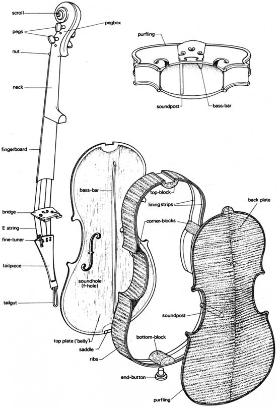 Comparison Of Finite Element Method And Modal Analysis Of Violin Top