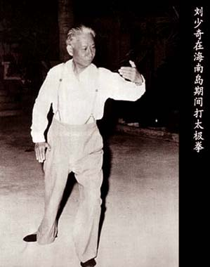 Cooperative Chinese Tai Chi Taijiquan Kungfu Book With Cd:learning Authentic Chen-style Tai Chi From The Very Beginning Commodities Are Available Without Restriction Books