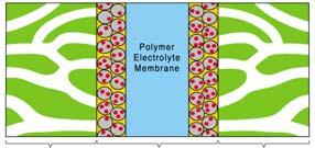 Fuel Cells and Hydrogen  Polymer Electrolyte Membrane Fuel
