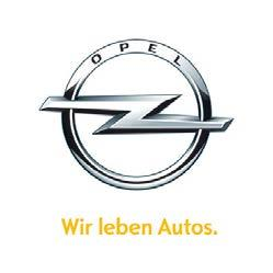 Opel Insignia Navi 900 IntelliLink Questions and Answers - PDF