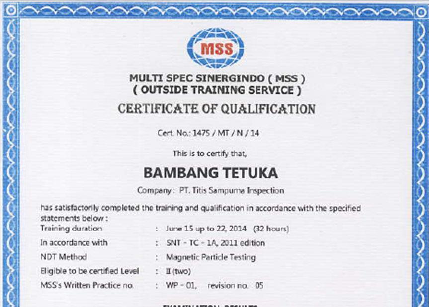 COMPANY PROFILE PT  DANALAM CIPTA PRATAMA TECHNICAL INSPECTION AND