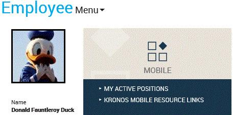 YMCA OF THE GREATER TWIN CITIES GUIDE: KRONOS MOBILE FOR EMPLOYEES - PDF