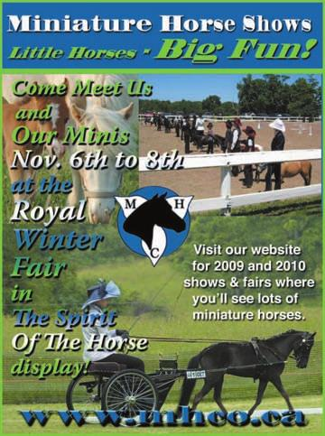 Hugh graham wins 100000 caledon cup final pdf 16 octobernovember 2009 the rider the ontario federation of agriculture representing the fandeluxe Gallery