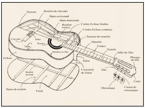 The classical guitar soundboards and their bracing: The luthier s
