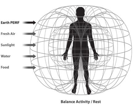 PEMF The Fifth Element of Health - PDF
