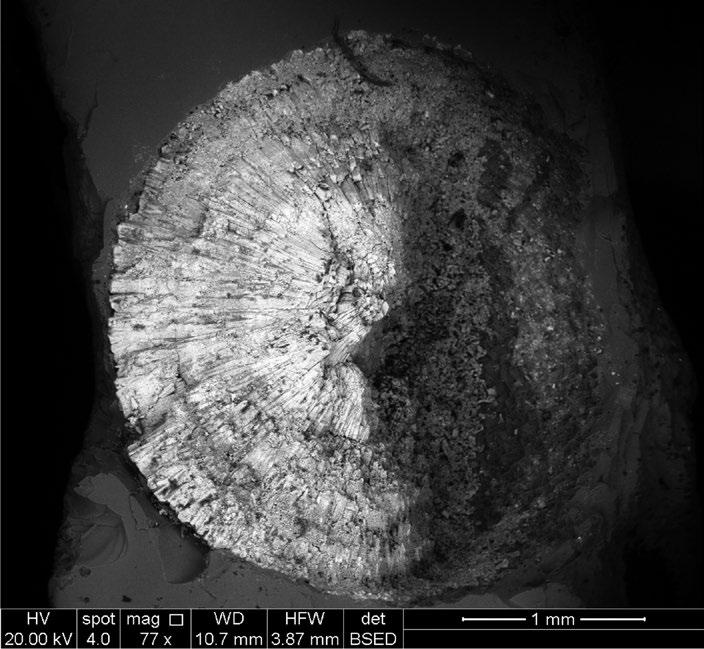spheroid of radially-fibrous pyrite/marcasite and small inclusions of baryte. Non-destructive characterisation was carried out by SEM-EDS analysis.