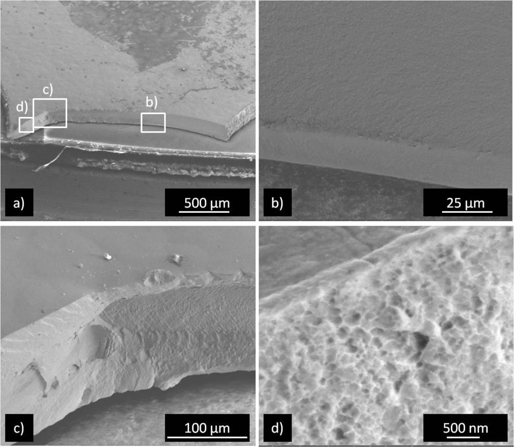 Chapter 3 - Fatigue of nanocrystalline Ni Figure 3-4: SEM micrographs of the fractured surface of a fatigued nc Ni specimen.