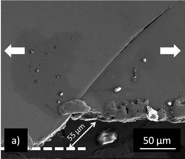 Chapter 5 - Deformation behavior and microstructural stability of nanotwinned Cu under monotonic and cyclic loading Figure 5-9: SEM micrograph of ntcu20µmlf11: (a) the sheared offset of about 55 µm