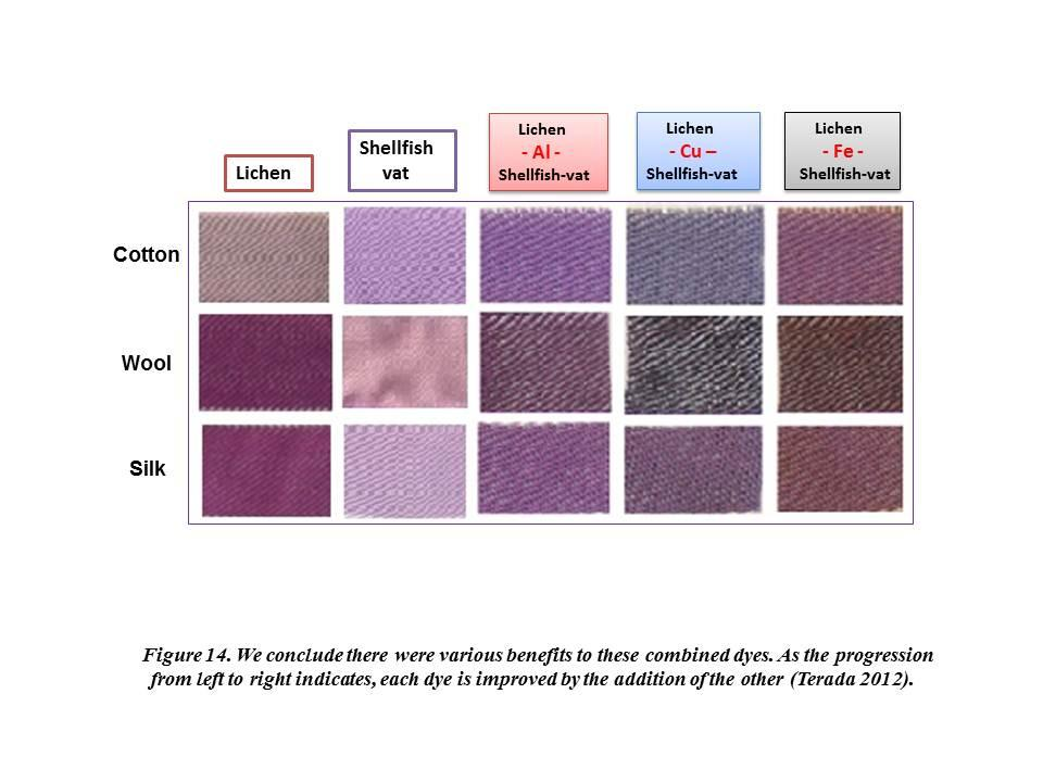 The Politics of Purple: Dyes from Shellfish and Lichens - PDF