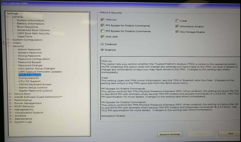 Dell Tpm Issue