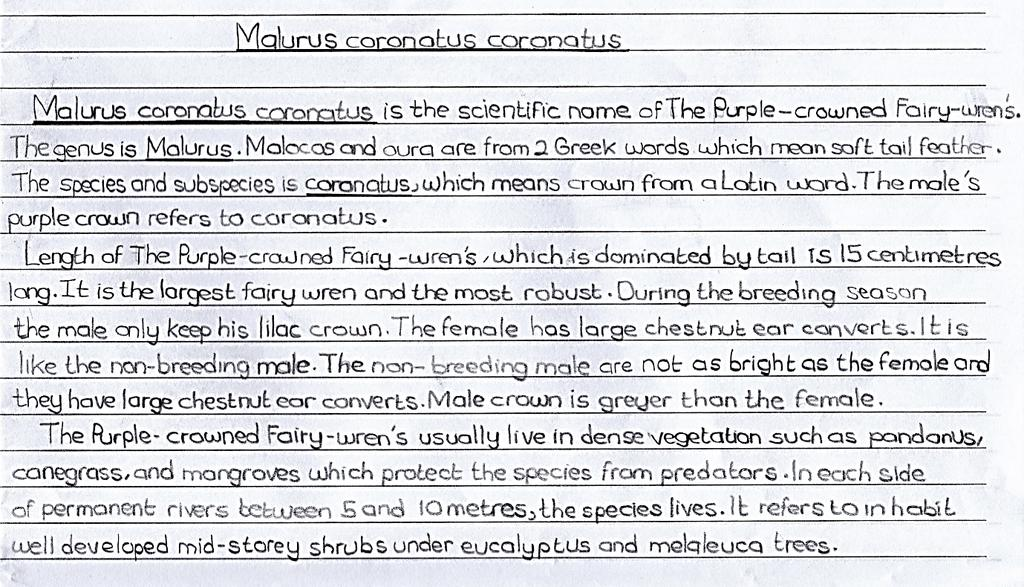 Text 5.12 is an example of an individual construction text by a student from School 1