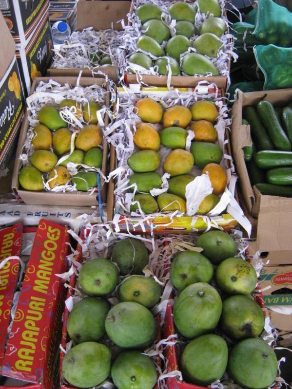 Guide to export of fresh and processed mango from Kenya - PDF