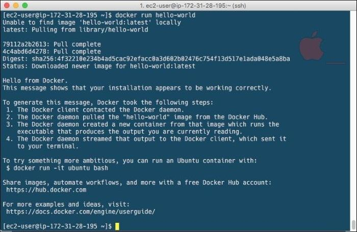 Developing with Docker - PDF