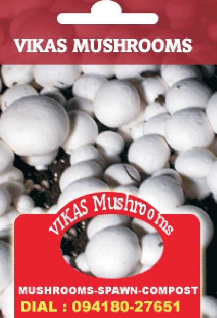 Indian Mushroom Conference Ludhiana  Abstracts  Organised by