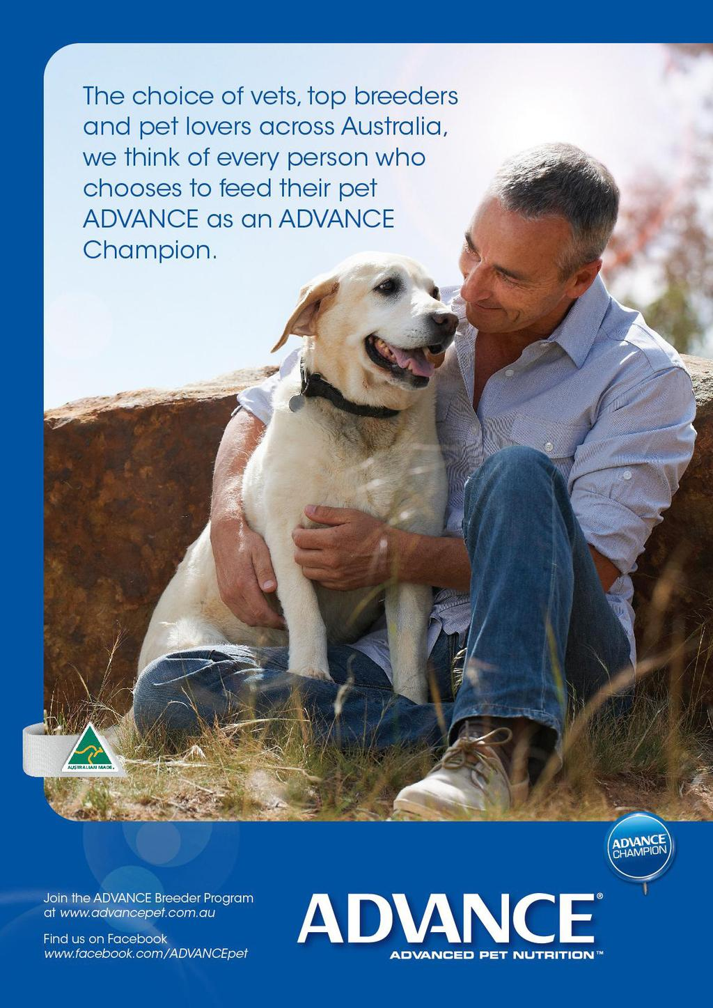 Catalogue Of Results All Breeds Championship Show Pdf Free Download