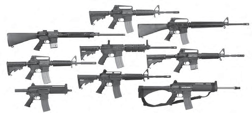 For all BUSHMASTER XM15 and C15 Models - PDF