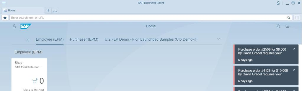 SAP Business Client PDF
