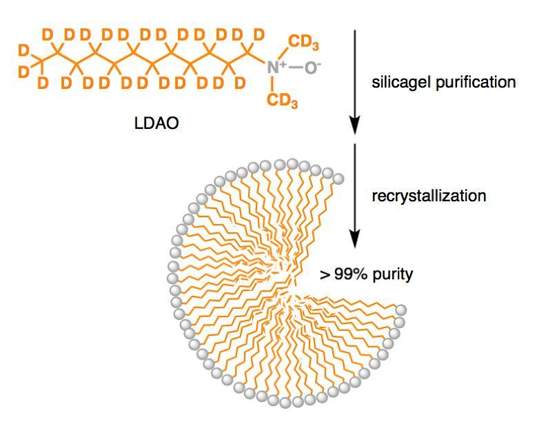 AILM Advanced Isotopic Labelling Methods for Integrated Structural
