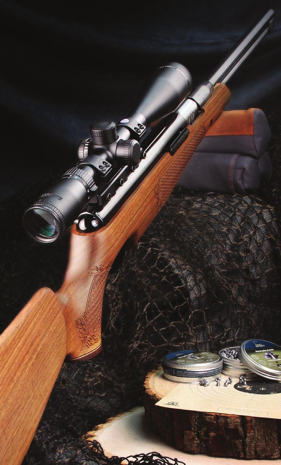 10 % OFF  airguns  open sights What exists and how do they Work? pg