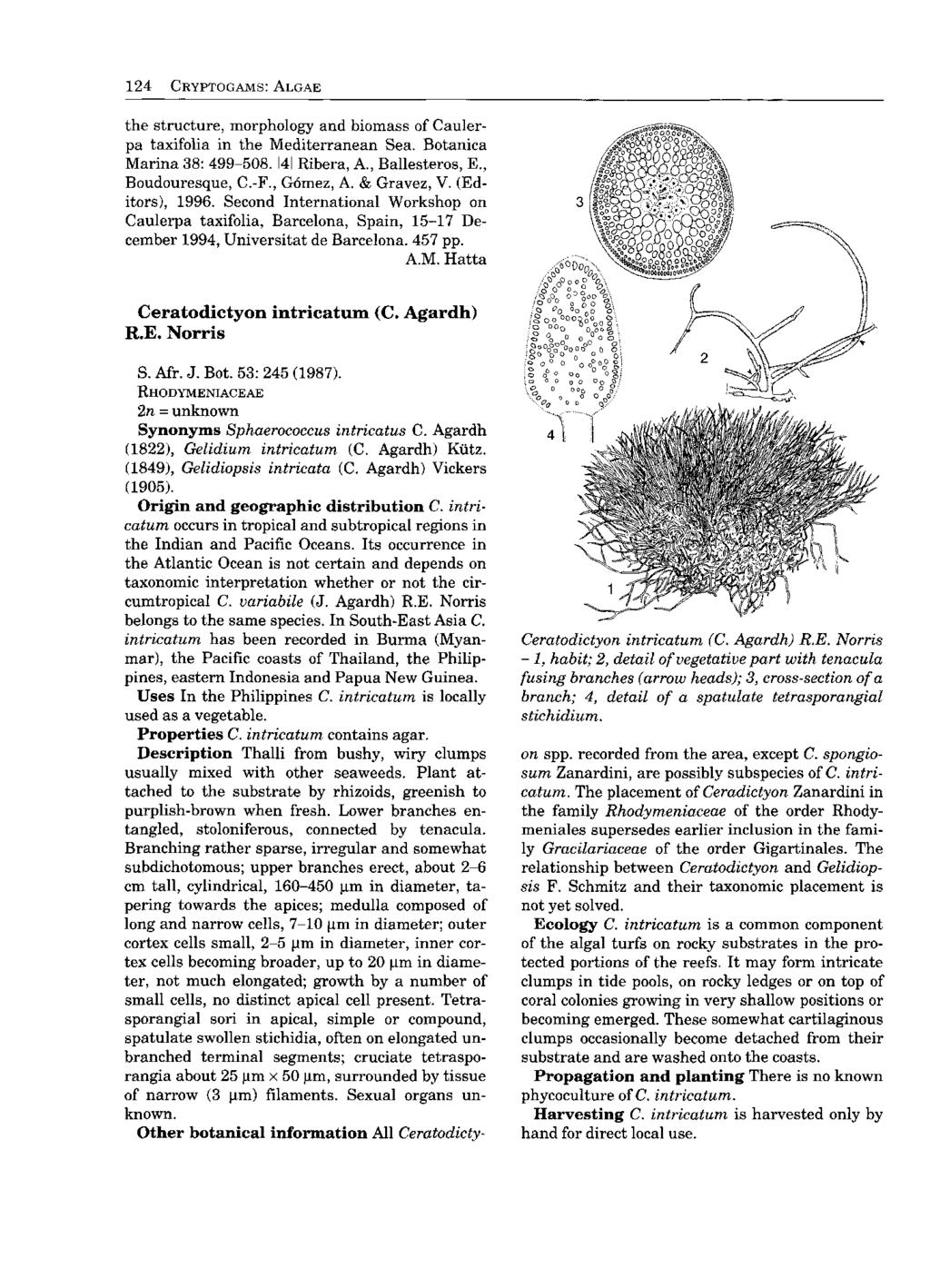 Vqvj Fyy 0v Plant Resources Of South East Asia No 15 1 Voucher Giant Rp 800000 124 Cryptogams Algae The Structure Morphology And Biomass Caulerpa Taxifolia In Mediterranean