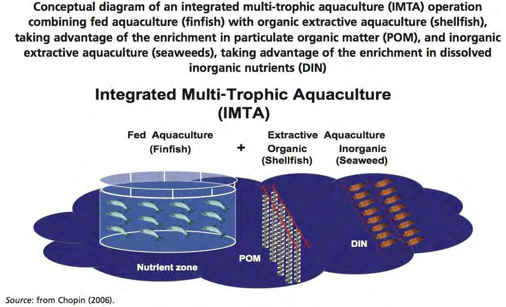 foto de ACCELERATING THE DEVELOPMENT OF SUSTAINABLE AQUACULTURE INDUSTRY ...