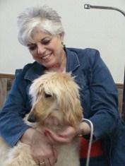Topknot News  The newsletter of the Afghan Hound Club of America