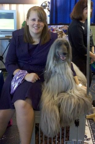 Topknot News  The newsletter of the Afghan Hound Club of