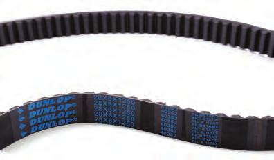 DUNLOP B101 Replacement Belt