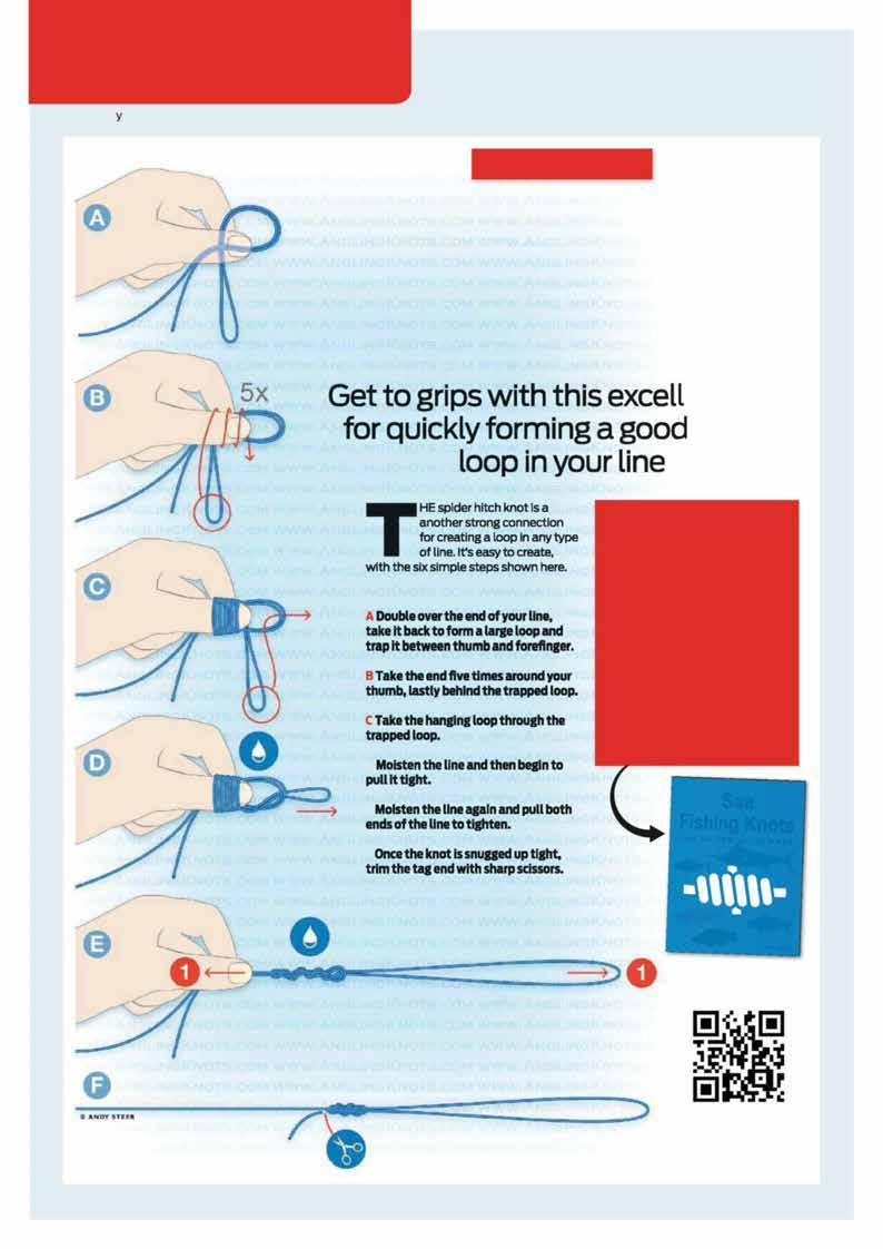 3ff44601bb6 SEA SCHOOL LEARN THE ART OF TYING Artwork by Andy Steer KNOW YOUR KNOTS  SPIDER HITCH
