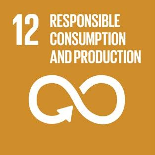 Domini Funds Goal 12: Ensure sustainable consumption and production patterns We favor investments that promote sustainable consumption and production patterns and mitigate the environmental impacts